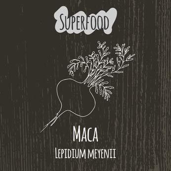 superfood korzeń maca